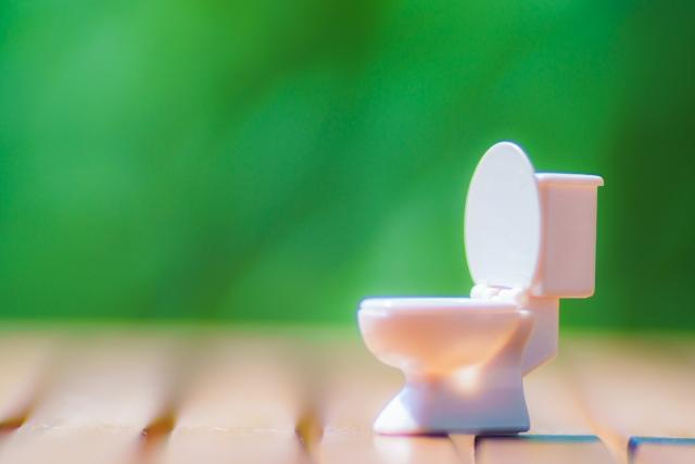仮設トイレの種類
